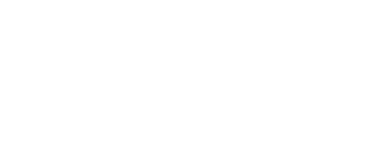 national womens half logo reverse